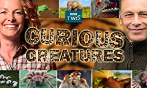 Curious Creatures: Season 1